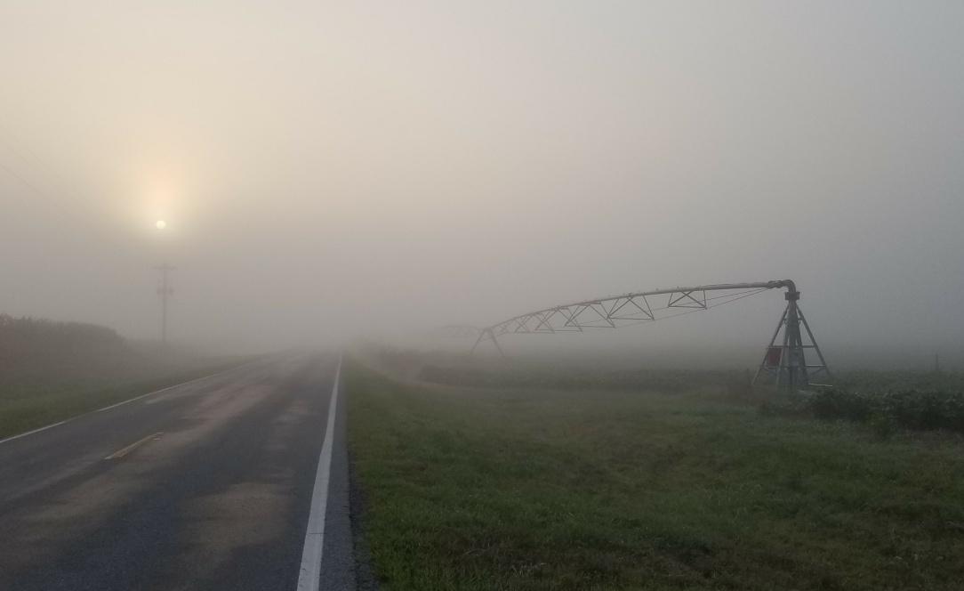 pivot fog crop